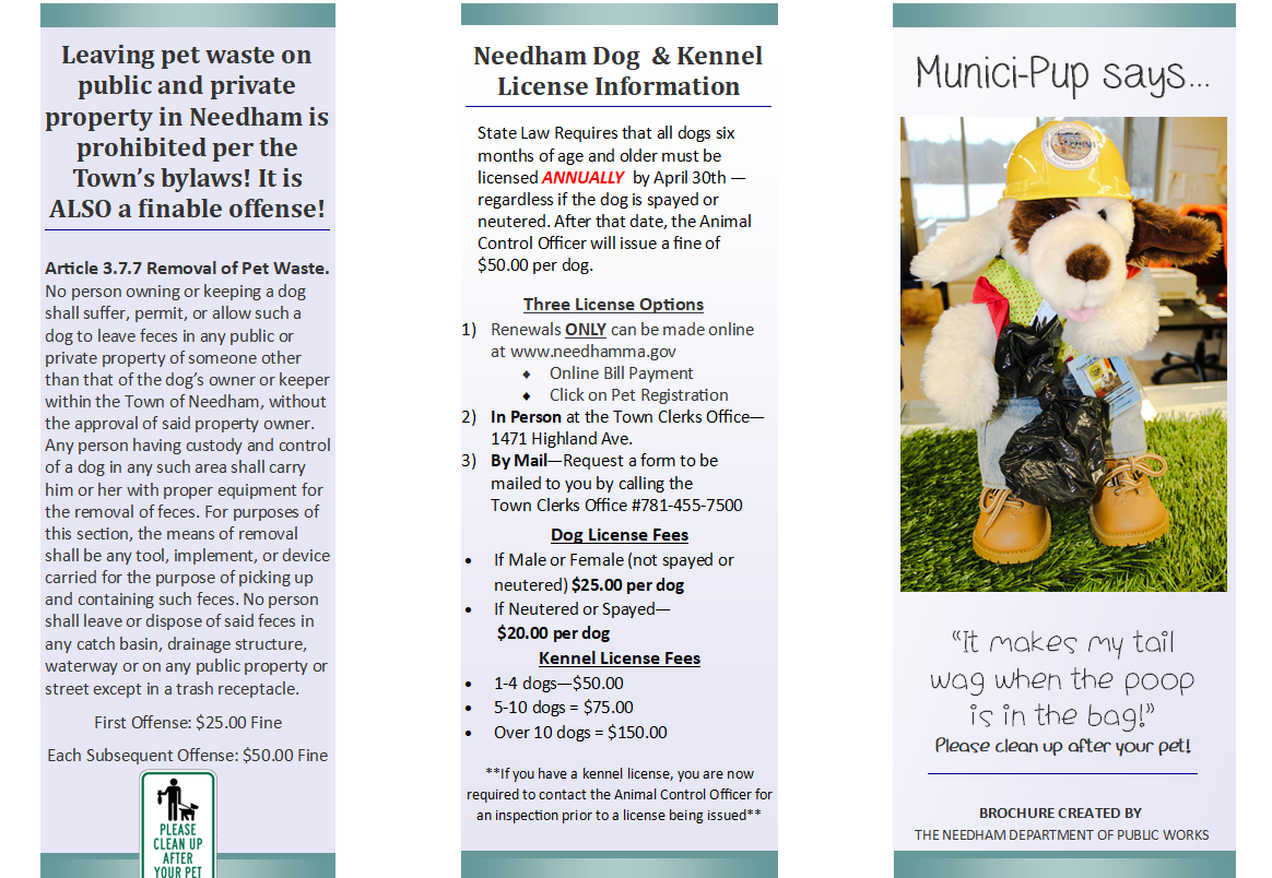 Safe Pet Waste Disposal Brochure Opens in new window